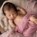 Beautiful Newborn Mia – Hobart Newborn Photographer