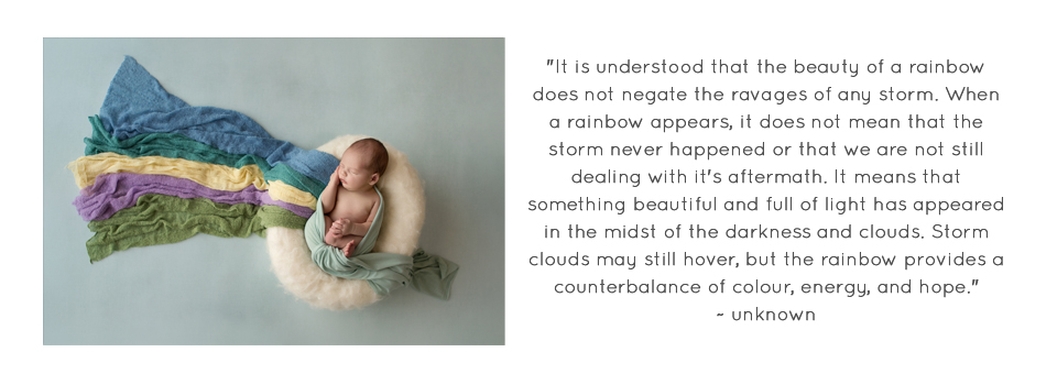 Tasmanian Rainbow baby Photographer