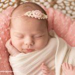 Hobart Newborn Photographer – Harper