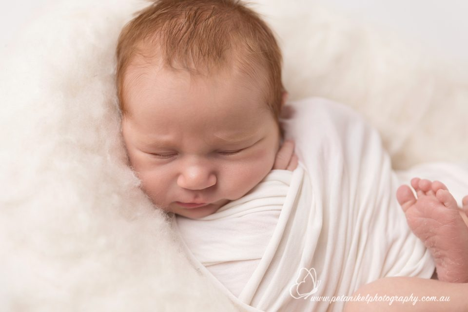 Hobart Newborn Photographer
